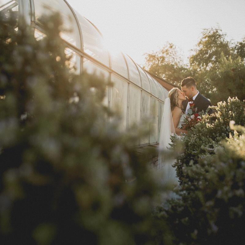 Wedding in Firebaugh, California